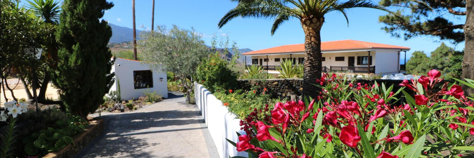 La Palma - Apartments Miranda - Entrance