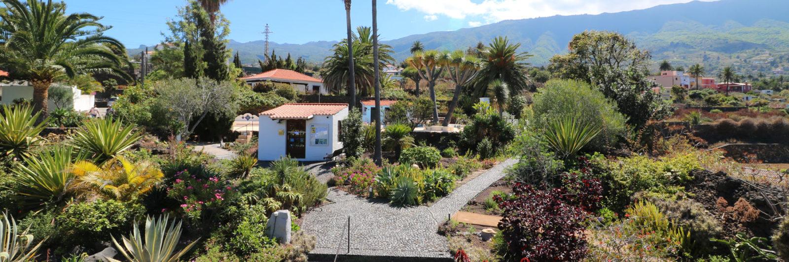 La Palma - Apartments Miranda - Garden